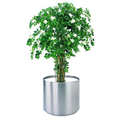 不锈钢大堂花盆