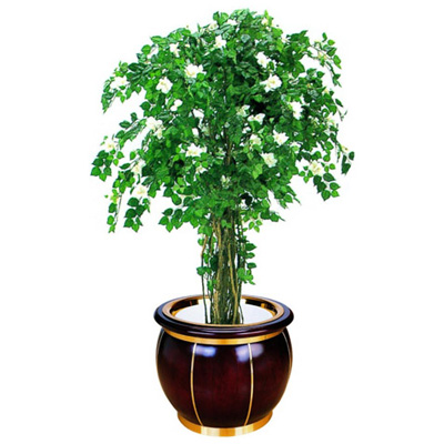 鼓形花盆(铜木)