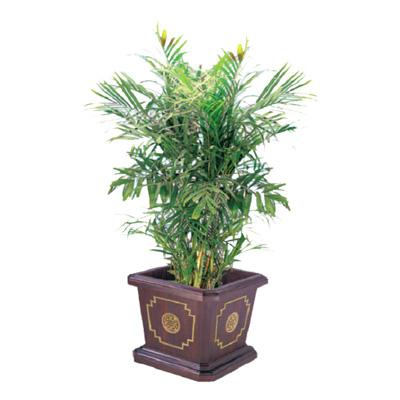 中式宫廷花盆